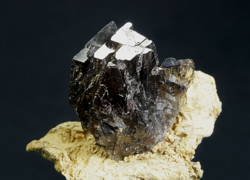 Bob Griffis Minerals - Ferroaxinite on Palygorskite from New